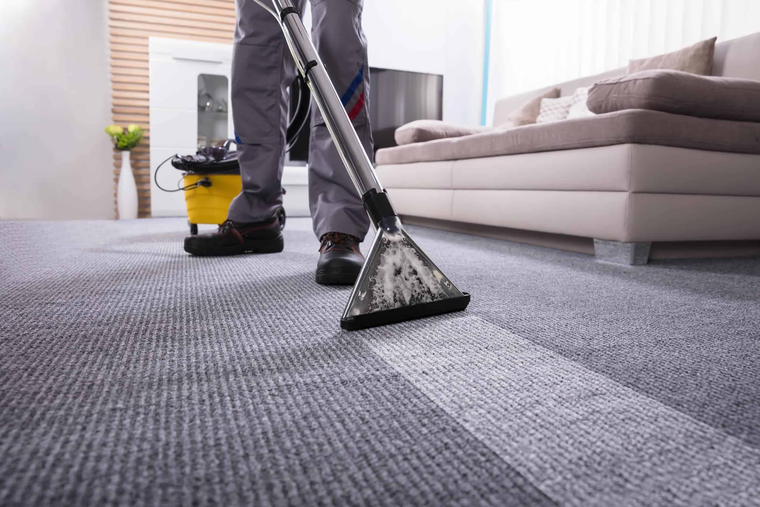 professional-carpet-cleaning-sussex-min