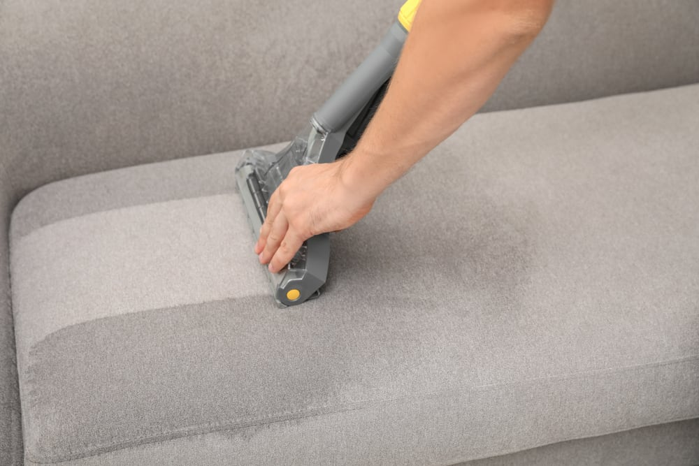 Photo of specialist upholstery cleaner on sofa
